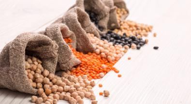 Il 2016 è l'anno internazionale dei legumi